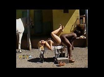 Barnyard Horse Sluts (part 3)