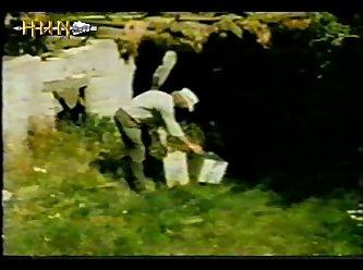 Animal Sex Mix Farm Sex (horse, Dog, Chicken, Donkey) 15'45 (part 6)